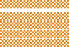 CHECKER STRIPES CAR VAN VINYL STICKERS GRAPHICS DECALS RACING SPORTS FLAG OTT