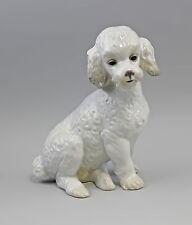 56121 Porzellan Figur - Niedlicher Hund  Süsser Pudel Nao Lladro Spanien