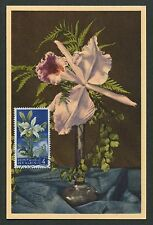 SAN MARINO MK 1957 FLORA ORCHIDEE ORCHID MAXIMUMKARTE MAXIMUM CARD MC CM d5892