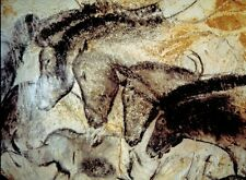 *Amazing Dappled Print! Horses Cave Art Equestrian Painting Poster Archaeology!
