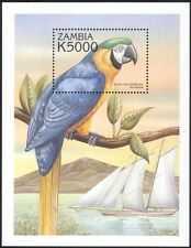 Zambia 2000 Macaw/Birds/Parrots/Nature/Wildlife/Conservation 1v m/s (n14152a)