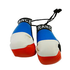 FRANCE COUNTRY FLAG MINI BOXING GLOVES .. NEW