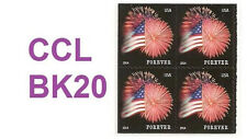 US 4869 Star-Spangled Banner forever block CCL MNH 2014