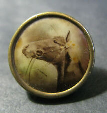 "RARE C.1907 LITHOGRAPH BUTTON OF ""STAMINA"" - AMERICAN THOROUGHBRED RACEHORSE"