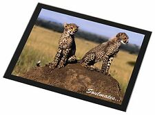 Two Cheetahs 'Soulmates' Black Rim Glass Placemat Animal Table Gift, SOUL-80GP