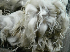 3.5 lbs RAW WOOL stuffing felting craft fiber fleece NAVAJO-CHURRO roving carpet