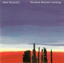 EDIE BRICKELL : PICTURE PERFECT MORNING / CD - TOP-ZUSTAND