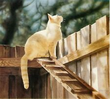 """The Amazing Cat Ramp"" Matted Open Mini Print WHITE CAT CatmanDrew Drew Strouble"