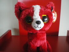 Ty Beanie Boo Tomato the Dog. 6 inch NWMT. IN STOCK NOW.