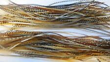 Gordon Griffiths Whiting Hebert-Miner Cock Saddle Feathers For Dries (100 Pcs)