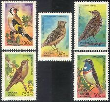 Russia 1995 Songbirds/Birds 5v set ref:b936