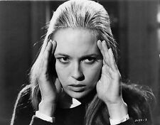 Photo originale Faye Dunaway Puzzle of a Downfall Child Jerry Schatzberg