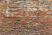 XXL Vlies Fototapete Komar Bricklane XXL4-025 Ziegelsteine Stein Ziegelwand