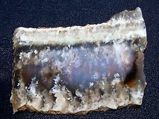 "Nyssa Plume Agate slab-  3 3/4  ""  x  2 7/8  ""---rough -cabbing-NEW MATERIAL"