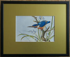 Basil Ede, 20''x16'' frame, Bird framed wall art, King Fisher print, river bird