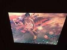 "Colleen Browning ""Fidelis Dry Season""Magical Realism Modern Art 35mm Glass Slide"