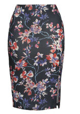 Floral Pencil Print Skirt 22 Blue/Multi