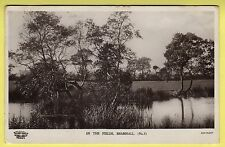 Cheshire - Bramhall, In the Fields - C. R. Rhodes Real Photo Postcard - 1915