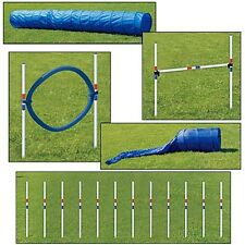 Dog Agility 5 Piece Set   OOA7 Training & Obedience JEFFERS PET