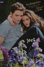 Twilight BREAKING DAWN-POSTER a3 (circa 42 x 28 cm) - skinning fan Raccolta Nuovo