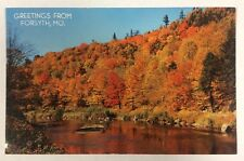 """Greeting from Forsyth, Missouri"" MO Autumn Landscape Chrome Postcard Unused"