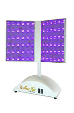 Caribbean Sun RB-PRO stops Acne FAST blue/red LED light therapy. Steel body.