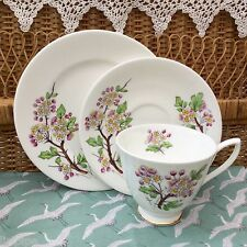 ROYAL ALBERT 1950s TRIO SET PLATE CUP & SAUCER FLOWER OF MONTH MAY HAWTHORN