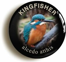 KINGFISHER ALCEDO ATTHIS BADGE BUTTON PIN (1inch/25mm diameter) BIRD WATCHING