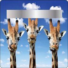 Sticker boites aux lettres déco Girafe 30x30cm 3506