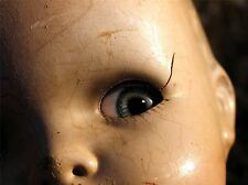 ART PRINT POSTER PHOTO MACRO DETAIL ANTIQUE DOLL FACE CRACKED CREEPY LFMP0726