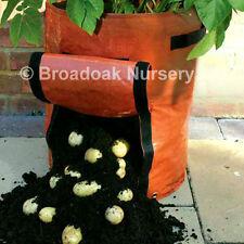 1 Impianto di Patate Sacco, vegetale Fioriera, crescere SACCO, VASCA, Patio, patate FIORIERA