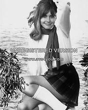 """Olivia Newton John 10"""" x 8"""" Photograph no 55"""