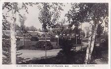 L'Ombre des Bouleaux Parc ST-FÉLICIEN Quebec 1940-60 Carte Photo Rob Lefebvre