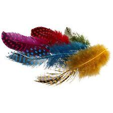 Gallina De Guinea Pájaro Plumas 50 piezas Color Varios Hacer Joyas Manualidades