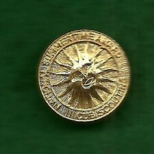 VINTAGE  BOY SCOUT  - CUB SCOUT NATIONAL SUMMERTIME AWARD PIN