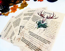 Bestiary: Witcher inspired journal pages. Noonwraith, Cockatrice, Leshen, Drowne