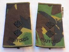 Rangschlaufen: Lieutenant, Staffordshire Regiment , DPM, STAFFORDS