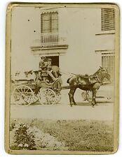 PHOTO vintage print circa 1900 un attelage avec cheval femmes & hommes à bord