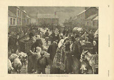 An Irish Pig Fair, Street Market, Agriculture, Vintage 1892 Antique Art Print.