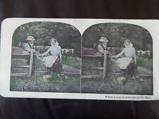 "c. 1895   3d COLOUR STEREOGRAPH/ STEREOGRAM PHOTO CARD  ""Where is your fortune"""