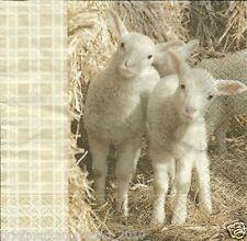 3 Servietten Napkins Ostern Lamm Lämmchen Stroh Schaf #123