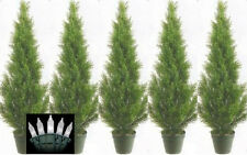 5 CEDAR IN OUTDOOR 3' TOPIARY TREE PLANT ARTIFICIAL BUSH WITH CHRISTMAS LIGHTS