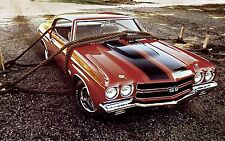 1971 Chevrolet Chevelle SS roped 24X36 inch poster, sports car, muscle car