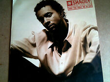 "SHAGGY - WHY YOU TREAT ME SO BAD - R&B HIPHOP HIP HOP URBAN 12"" VINYL RECORD DJ"