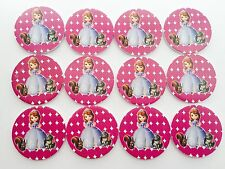 12pcs Disney Sofia The First foam cupcake TOPPERS. Girls party Jelly Cup
