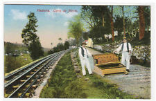 Carro do Monte Cog Railroad Madeira Portugal 1910c postcard