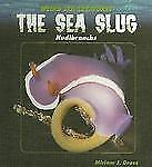 The Sea Slug: Nudibranchs (Weird Sea Creatures)