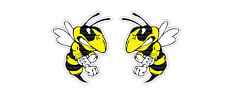 2x Angry Bee Sticker Decal Car Ski-Doo America Patriots ATV Bike