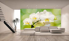 White Orchid View Wall Mural Photo Wallpaper GIANT DECOR Paper Poster Free Paste