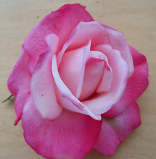 "4"" Variegated Pink Poly Silk True Touch Rose Flower Hair Clip, Wedding, Prom"